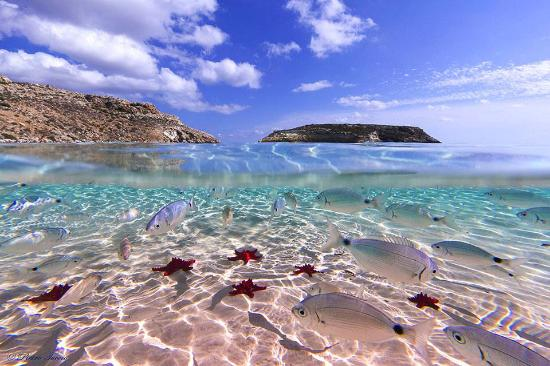 Permalink to Appartamenti Lampedusa